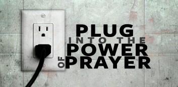 stay plug